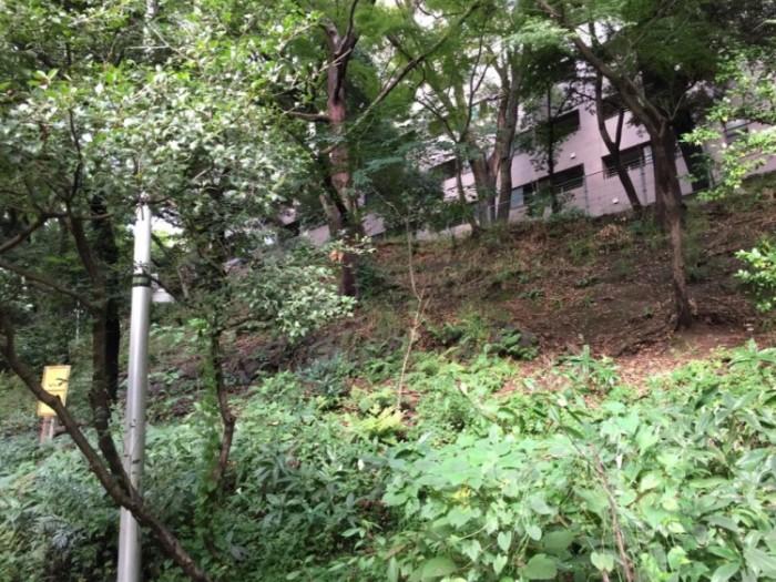 赤坂の地名の由来-関東ローム層の赤土