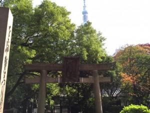 スカイツリーと三囲神社大鳥居