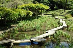 Plank_bridge_-_Koishikawa_Korakuen_-_DSC09252