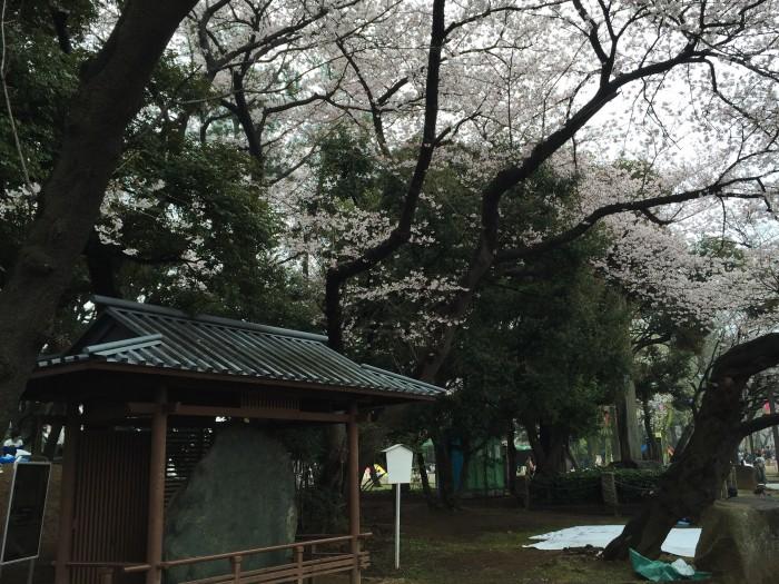 江戸時代の桜の名所、飛鳥山-飛鳥山の由来と花見の起源