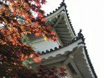 徳川家の繁栄と衰退を見つめた城-二条城の歴史