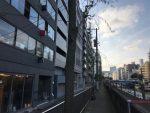 神田川沿いに造られた土塁-柳原土手