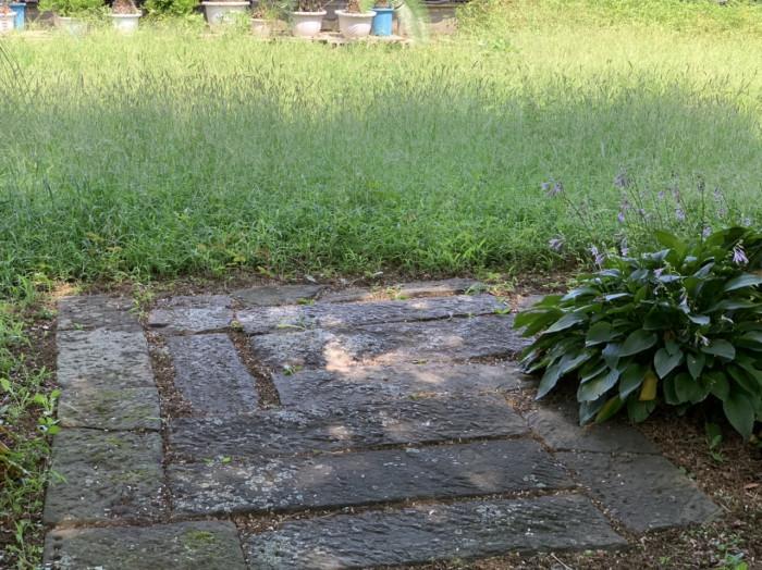 植物園内の乾薬場あと。石畳の上で薬草を乾燥させた。